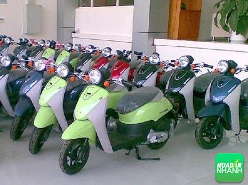 Kinh nghiệm chọn mua xe máy, 110, Uyên Vũ, Chuyên trang Xe Máy của MuaBanNhanh, 06/01/2016 14:31:46
