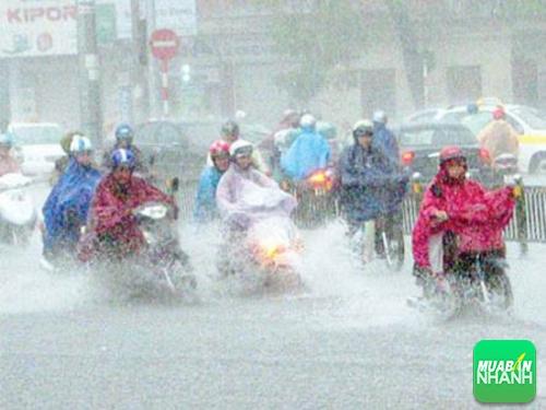 Kinh nghiệm đi xe máy an toàn trong mùa mưa bão, 224, Uyên Vũ, Chuyên trang Xe Máy của MuaBanNhanh, 17/03/2016 16:23:12