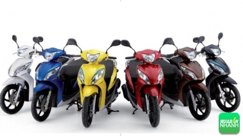 Lưu ý chọn màu xe máy theo năm sinh hợp phong thủy, 267, Tiên Tiên, Chuyên trang Xe Máy của MuaBanNhanh, 18/03/2016 17:44:00